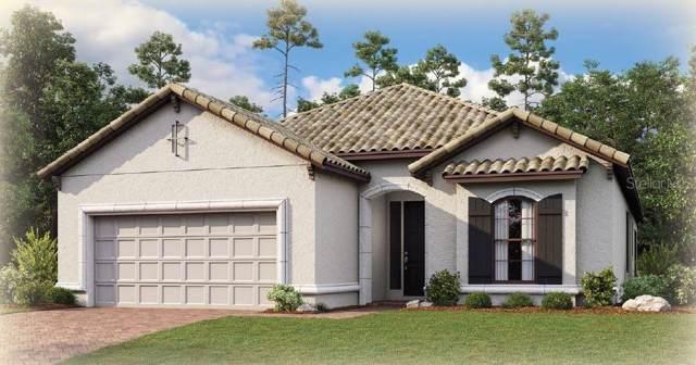 5356 Salcano Street, Sarasota, FL 34238 (MLS #A4442947) :: Team Bohannon Keller Williams, Tampa Properties