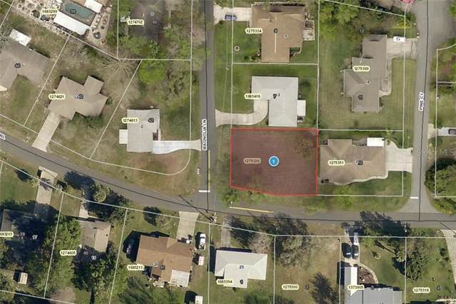 1 Magnolia Lane, Yalaha, FL 34797 (MLS #A4442998) :: The Nathan Bangs Group