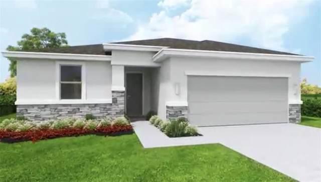 . Dongola Street, North Port, FL 34291 (MLS #A4444118) :: Cartwright Realty