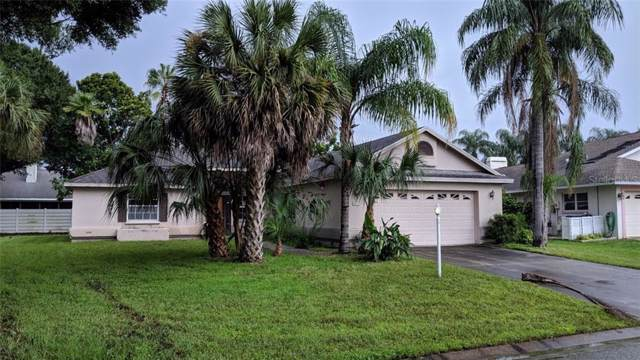 6107 55TH Terrace E, Bradenton, FL 34203 (MLS #A4444198) :: Team 54