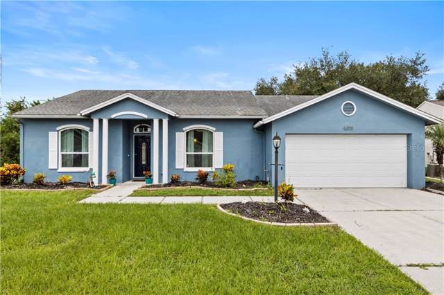 6206 63RD Avenue E, Palmetto, FL 34221 (MLS #A4444410) :: Paolini Properties Group