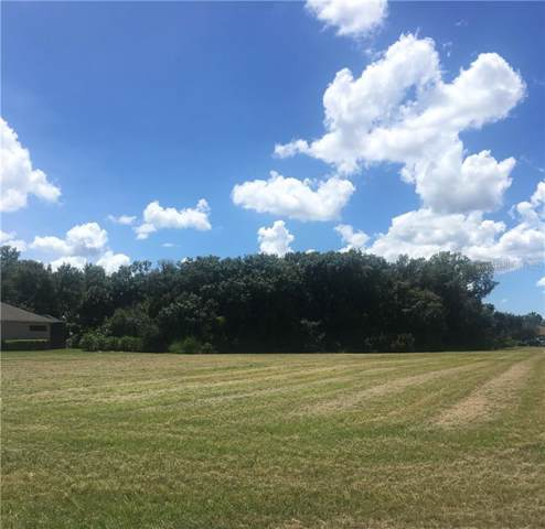 2419 156TH Place E, Parrish, FL 34219 (MLS #A4444464) :: McConnell and Associates