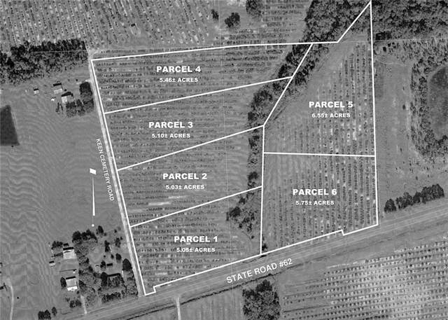 Address Not Published, Parrish, FL 34219 (MLS #A4444553) :: Cartwright Realty