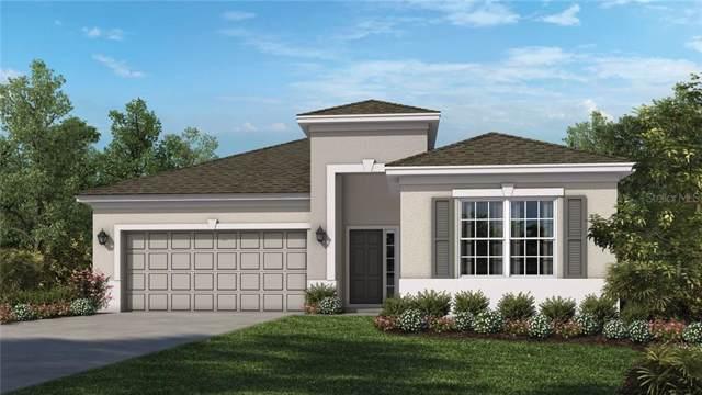 29900 Walsh Oak Drive, Wesley Chapel, FL 33545 (MLS #A4445542) :: The Duncan Duo Team