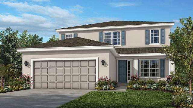 29730 Chapel Chase Drive, Wesley Chapel, FL 33545 (MLS #A4445544) :: The Duncan Duo Team
