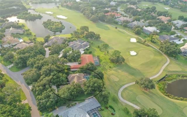 423 E Macewen Drive, Osprey, FL 34229 (MLS #A4445704) :: Burwell Real Estate