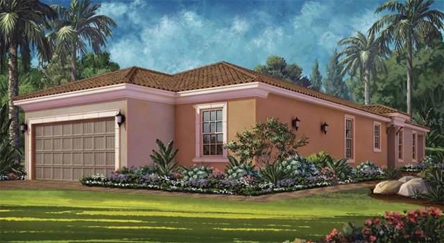 11119 Callisia Drive, Odessa, FL 33556 (MLS #A4446100) :: Baird Realty Group