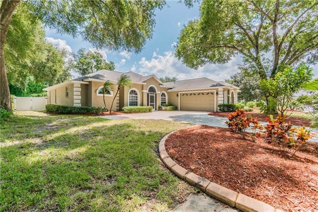 3038 River Woods Drive, Parrish, FL 34219 (MLS #A4446244) :: EXIT King Realty