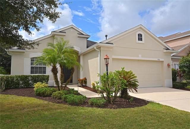 15616 Lemon Fish Drive, Lakewood Ranch, FL 34202 (MLS #A4446273) :: EXIT King Realty
