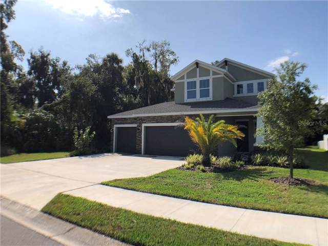 7313 Mill Hopper Court, Palmetto, FL 34221 (MLS #A4446347) :: Lock & Key Realty