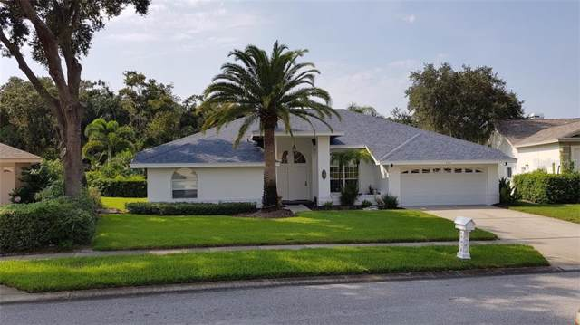 904 Belted Kingfisher Drive S, Palm Harbor, FL 34683 (MLS #A4446557) :: Delgado Home Team at Keller Williams
