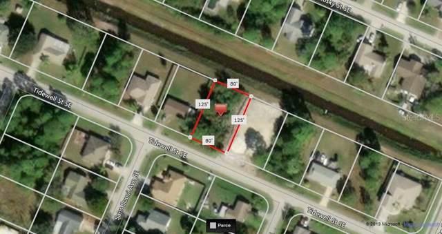 1437 Tidewell Street SE, Palm Bay, FL 32909 (MLS #A4446711) :: GO Realty