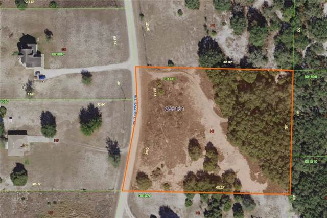 2171 Old Grove Trail, Frostproof, FL 33843 (MLS #A4446977) :: Homepride Realty Services