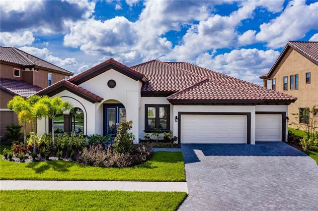 11974 Climbing Fern Avenue, Riverview, FL 33579 (MLS #A4447702) :: Cartwright Realty