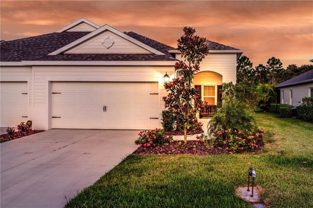 3930 Wildgrass Place, Parrish, FL 34219 (MLS #A4447890) :: Lockhart & Walseth Team, Realtors