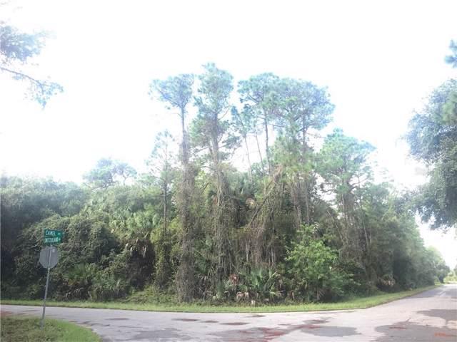 Switzerland Road, North Port, FL 34288 (MLS #A4448023) :: Ideal Florida Real Estate