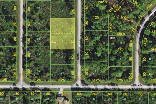 505 Reese Street, Port Charlotte, FL 33953 (MLS #A4448184) :: The Duncan Duo Team