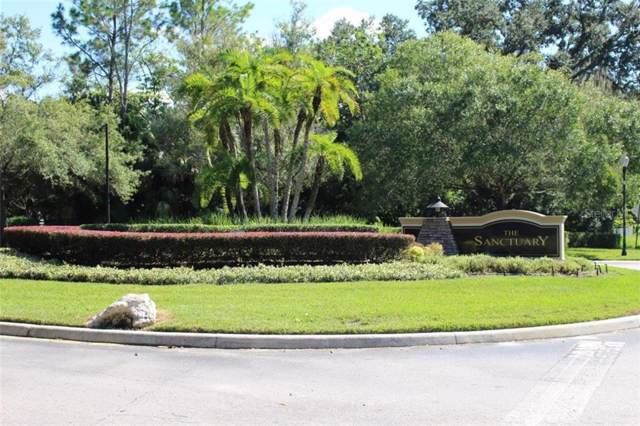 2706 Heavenly Court, Lutz, FL 33559 (MLS #A4448712) :: Rabell Realty Group