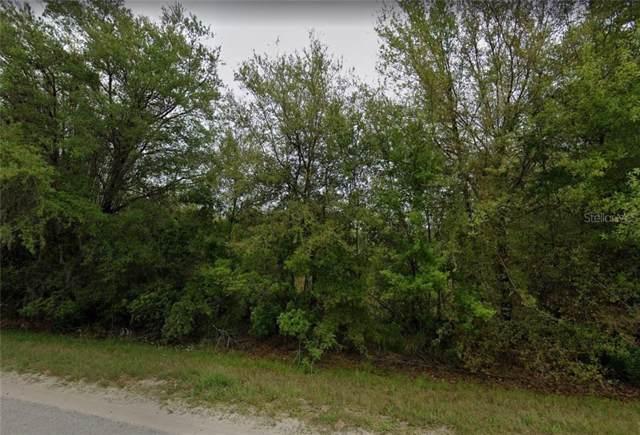 3516 Seminole Trail, Wimauma, FL 33598 (MLS #A4448951) :: Cartwright Realty