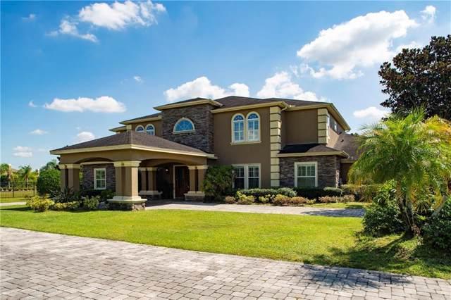 17229 Breeders Cup Drive, Odessa, FL 33556 (MLS #A4449137) :: Kendrick Realty Inc