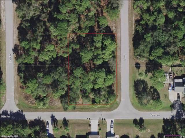17372 Billiar Avenue, Port Charlotte, FL 33948 (MLS #A4449189) :: Homepride Realty Services
