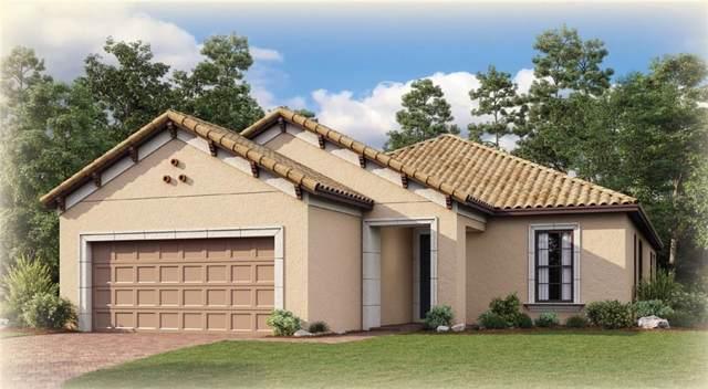 12911 Sorrento Way, Bradenton, FL 34211 (MLS #A4449222) :: The Comerford Group