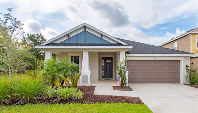 5799 Liatris Circle, Sarasota, FL 34238 (MLS #A4449557) :: Sarasota Property Group at NextHome Excellence