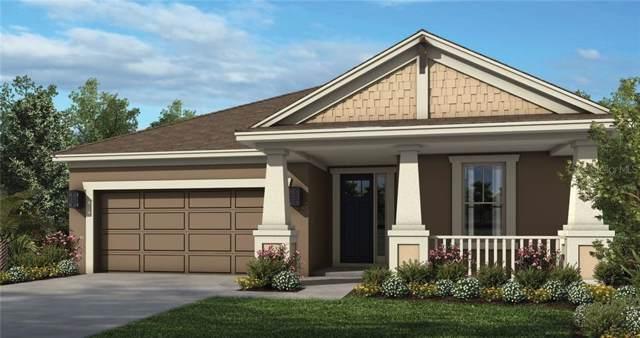 34203 Astoria Circle, Wesley Chapel, FL 33545 (MLS #A4450410) :: Florida Real Estate Sellers at Keller Williams Realty