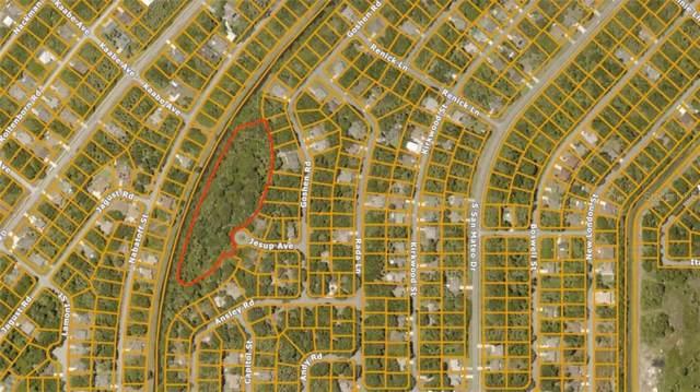 Jesup Avenue, North Port, FL 34288 (MLS #A4450474) :: Team Bohannon Keller Williams, Tampa Properties