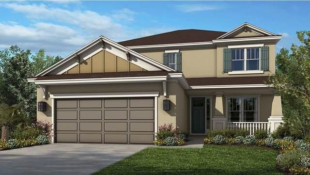 34210 Astoria Circle, Wesley Chapel, FL 33545 (MLS #A4450500) :: Florida Real Estate Sellers at Keller Williams Realty