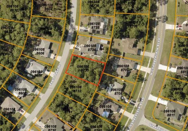 Eagle Pass Street, North Port, FL 34286 (MLS #A4450804) :: The Duncan Duo Team