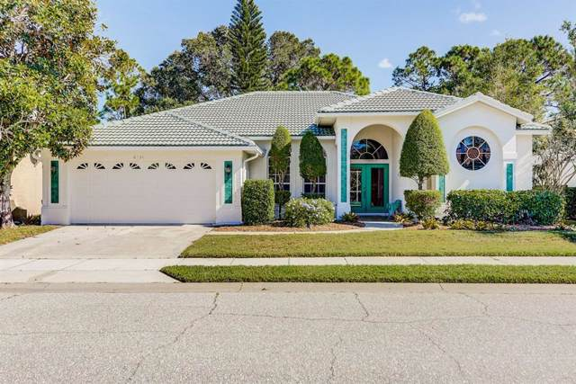 8851 Havenridge Drive, Sarasota, FL 34238 (MLS #A4451224) :: Lucido Global of Keller Williams