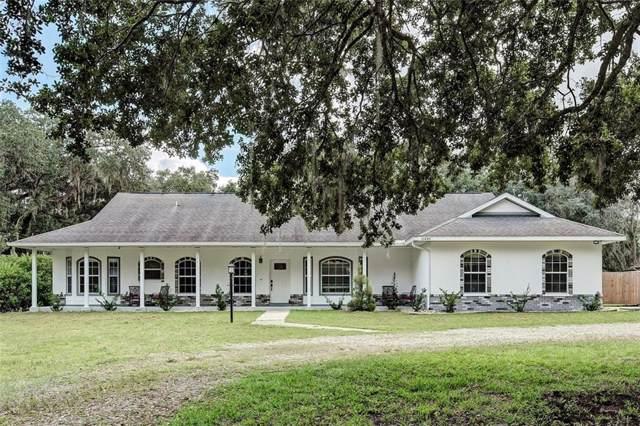 10845 Old Tampa Road, Parrish, FL 34219 (MLS #A4451249) :: Lucido Global of Keller Williams