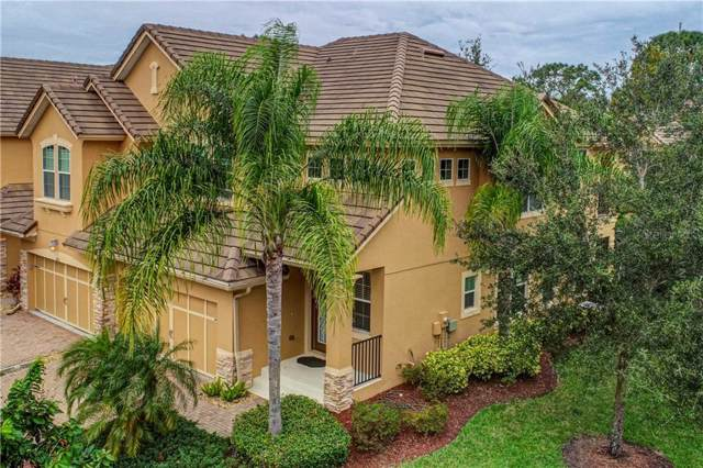 5439 Napa Drive, Sarasota, FL 34243 (MLS #A4451549) :: Dalton Wade Real Estate Group