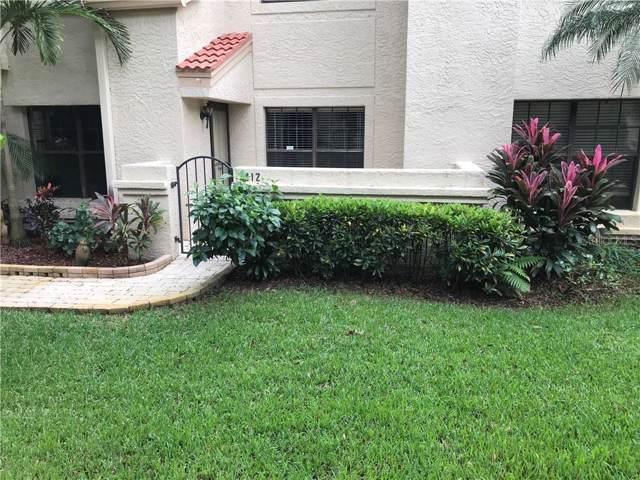212 Los Prados Drive, Safety Harbor, FL 34695 (MLS #A4451564) :: Cartwright Realty
