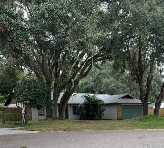 306 Hutch Court, Brandon, FL 33510 (MLS #A4452004) :: Griffin Group