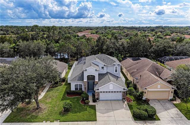 11514 Water Poppy Terrace, Lakewood Ranch, FL 34202 (MLS #A4452025) :: Zarghami Group
