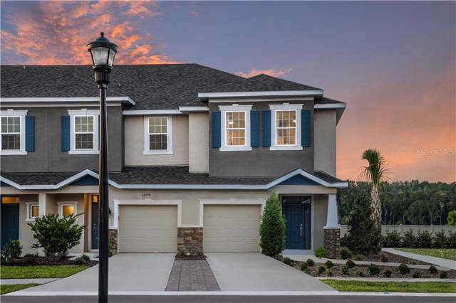 1082 Amber Leaf Way 04-25, Wesley Chapel, FL 33544 (MLS #A4452157) :: Delgado Home Team at Keller Williams