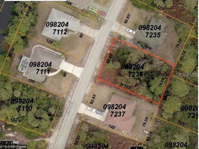 Ripley Street, North Port, FL 34286 (MLS #A4452332) :: The Robertson Real Estate Group