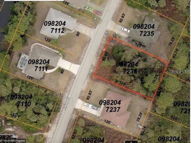 Ripley Street, North Port, FL 34286 (MLS #A4452332) :: Team Bohannon Keller Williams, Tampa Properties