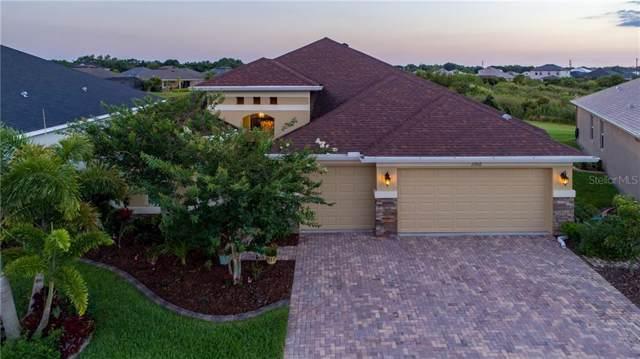 11912 Persian Terrace, Bradenton, FL 34212 (MLS #A4452395) :: Sarasota Home Specialists