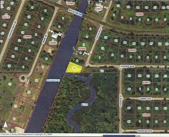 1139 Hoffer Street, Port Charlotte, FL 33953 (MLS #A4452597) :: Homepride Realty Services