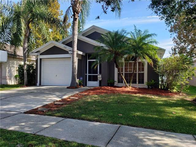 1828 Coyote Place, Brandon, FL 33511 (MLS #A4453007) :: The Duncan Duo Team