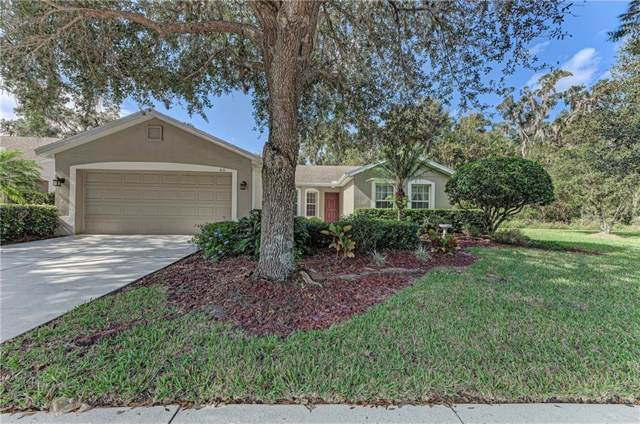 4111 Douglas Hill Place, Parrish, FL 34219 (MLS #A4453163) :: Medway Realty