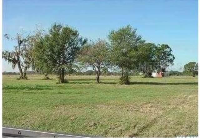 14865 Us Highway 301 N, Parrish, FL 34219 (MLS #A4453573) :: EXIT King Realty