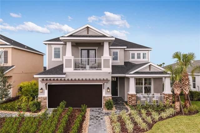 10551 Piedra Drive, Palmetto, FL 34221 (MLS #A4453581) :: Keller Williams Realty Peace River Partners