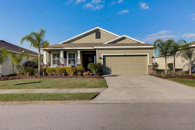 14913 Trinity Fall Way, Bradenton, FL 34212 (MLS #A4453672) :: Premier Home Experts
