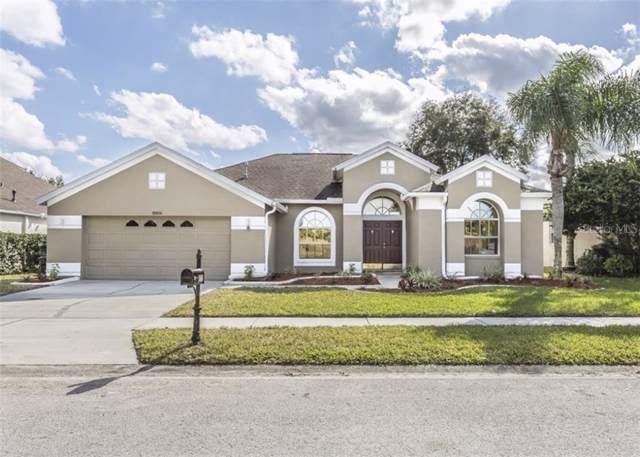8806 Torchwood Drive, Trinity, FL 34655 (MLS #A4453754) :: RE/MAX CHAMPIONS