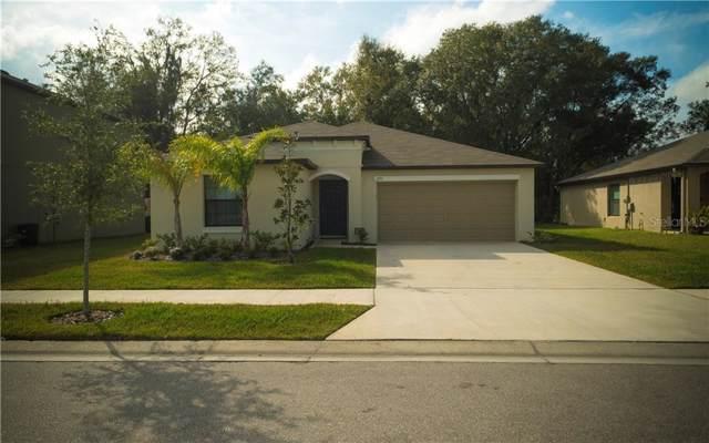 3051 Moulden Hollow Drive, Zephyrhills, FL 33540 (MLS #A4453938) :: Cartwright Realty