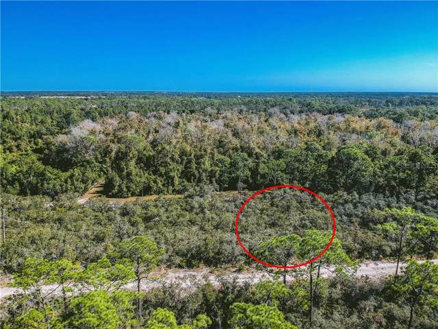 6720 Dian Avenue, Sebring, FL 33875 (MLS #A4454028) :: The A Team of Charles Rutenberg Realty